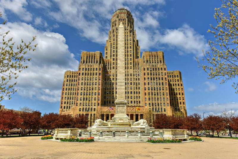 Niagara kwadrat - bizon, Nowy Jork fotografia royalty free
