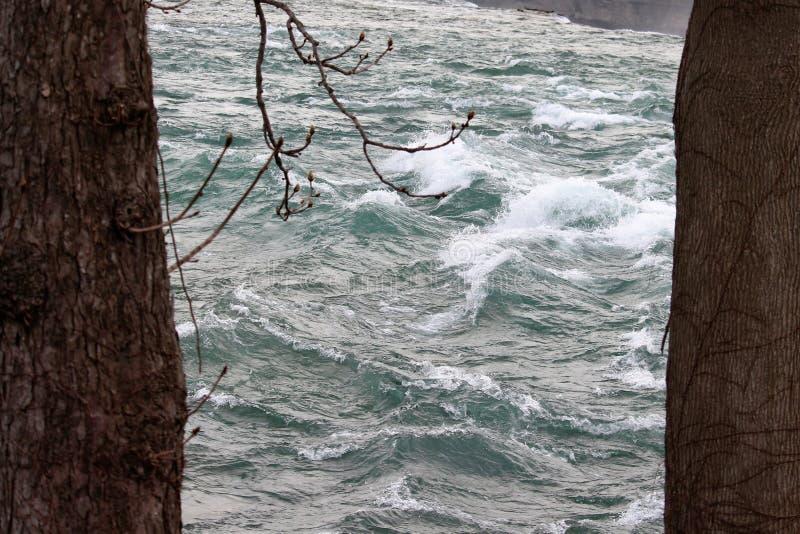Niagararivier die tussen twee bomen stromen stock foto's