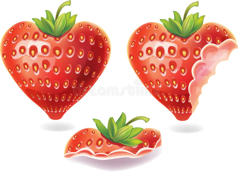 Download Nibbled strawberry stock vector. Image of nutrition, symbol - 22644696