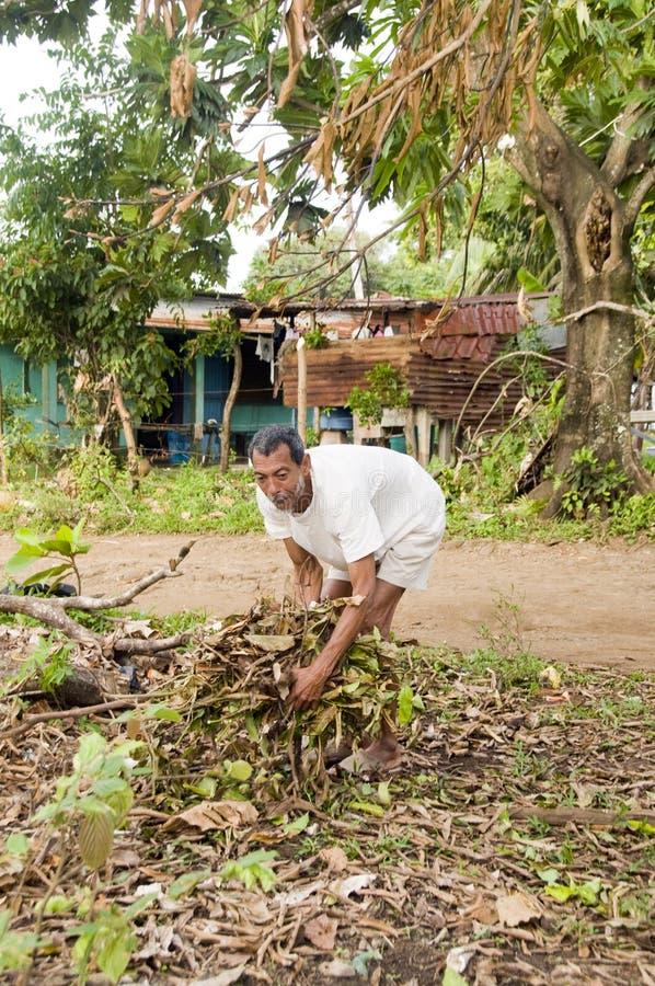 Nicaraguan mens die borstel voor brand verzamelt royalty-vrije stock foto's