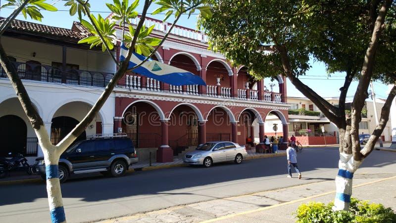Nicaraguan vlag op een boom royalty-vrije stock foto