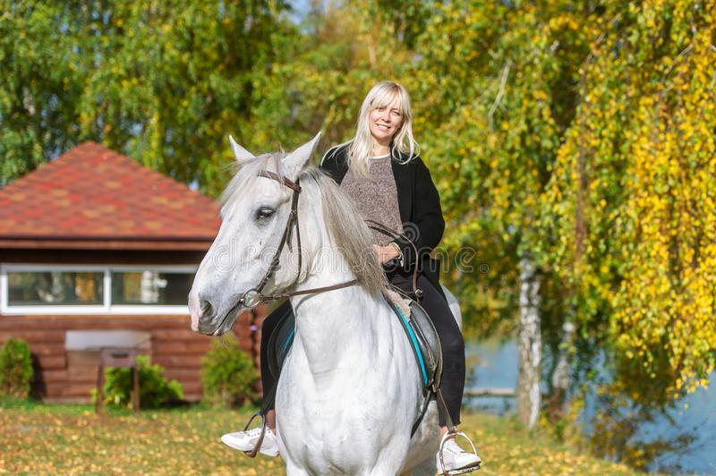 Attractive young woman riding on horse rural location at autumn royalty free stock photography