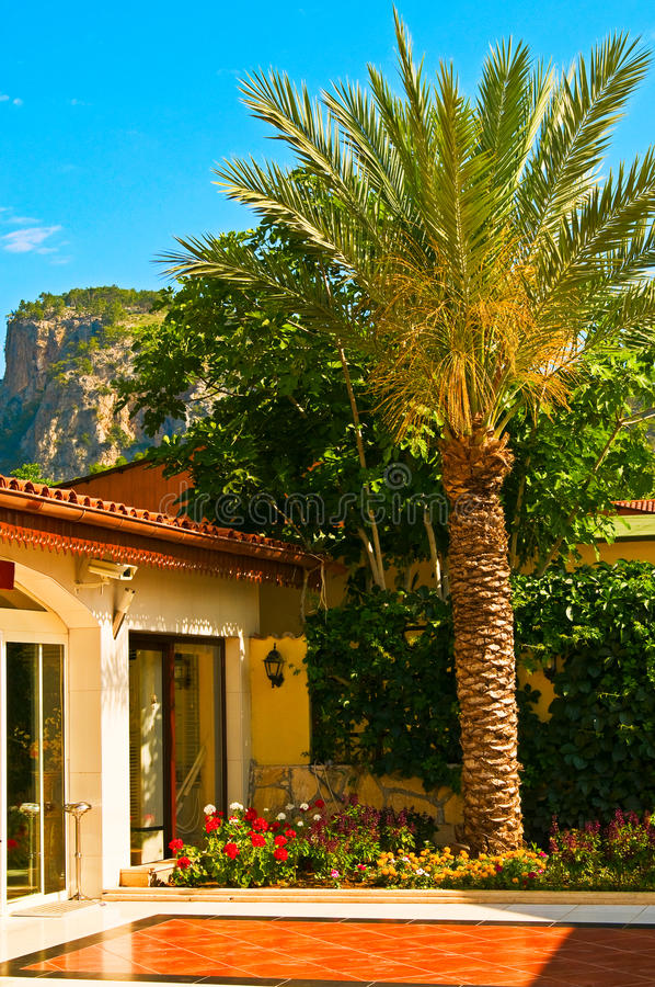 Nice blue sky,palm and small house. royalty free stock photos