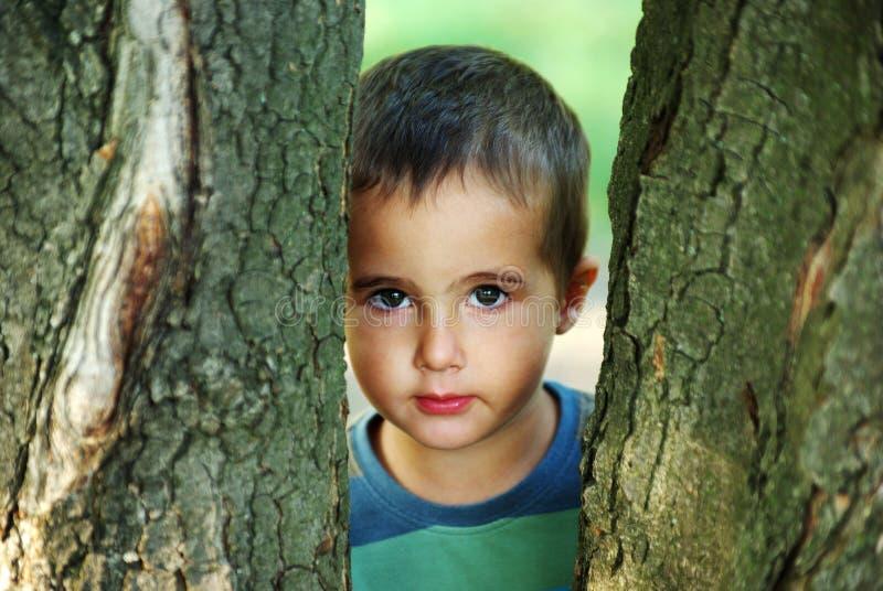 Nice Boy Hiding Beyound Trees Outdoors Royalty Free Stock Photos