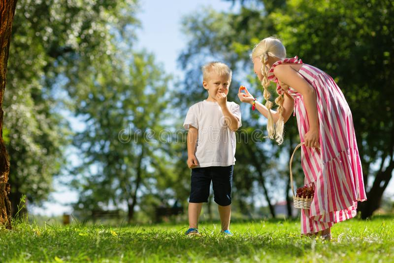 Nice children eating fruits in the park royalty free stock photo
