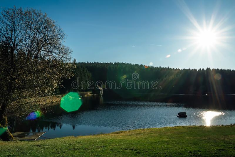 Nice clean pond with wooden building and spring tree with sun.  stock image