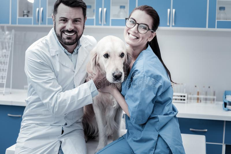 Nice delighted colleagues hugging the dog. Our favourite patient. Nice delighted joyful colleagues smiling and sitting together while hugging the dog stock image