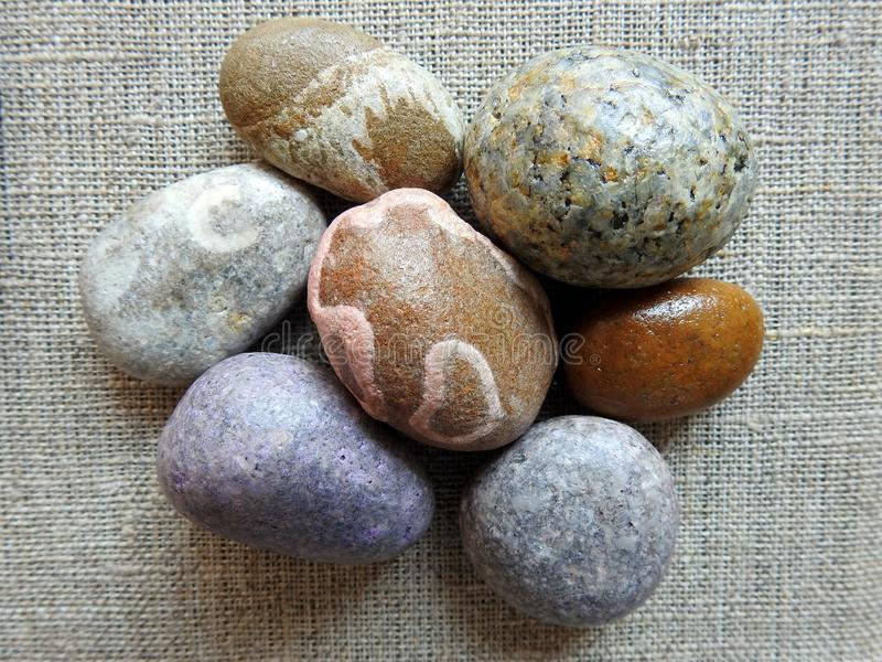 Beautiful different colors Baltic sea stones, Lithuania stock image