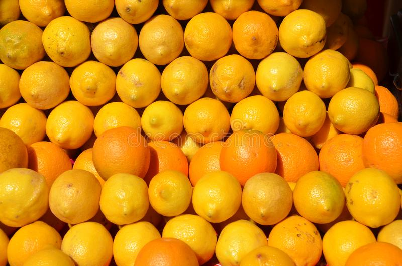 Download A  Nice Display Of Rows Of Oranges & Lemons In Portland, Oregon Stock Photo - Image of rows, ripe: 104284906