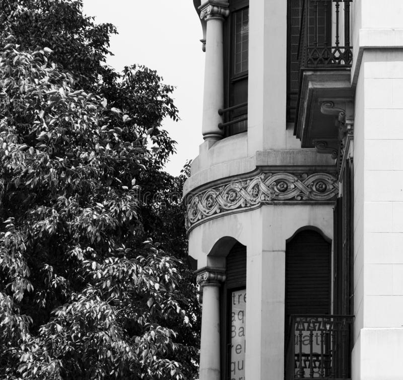 Nice floral border on the main facade. Shot in black and white detail on the facade of this historic building representing some character, animal or flower. Set stock images