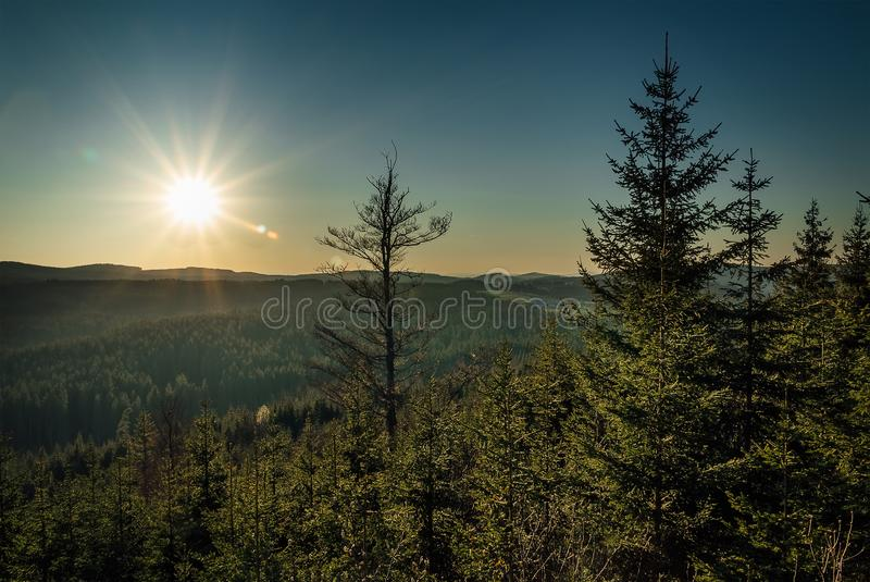 Nice forest valley with distant hill, blue sky and sun stock images