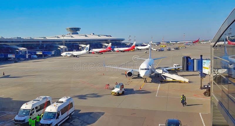 NICE FRANKRIKE - MAJ 2018 Flygplanet genomgår preflight service i Wien den internationella flygplatsen royaltyfria bilder