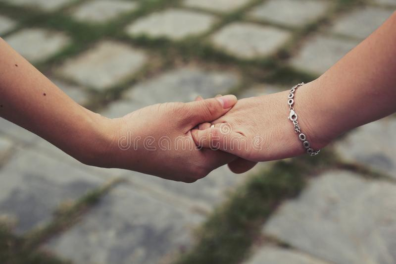 Nice friendship between two colleagues by a shake hands royalty free stock photography