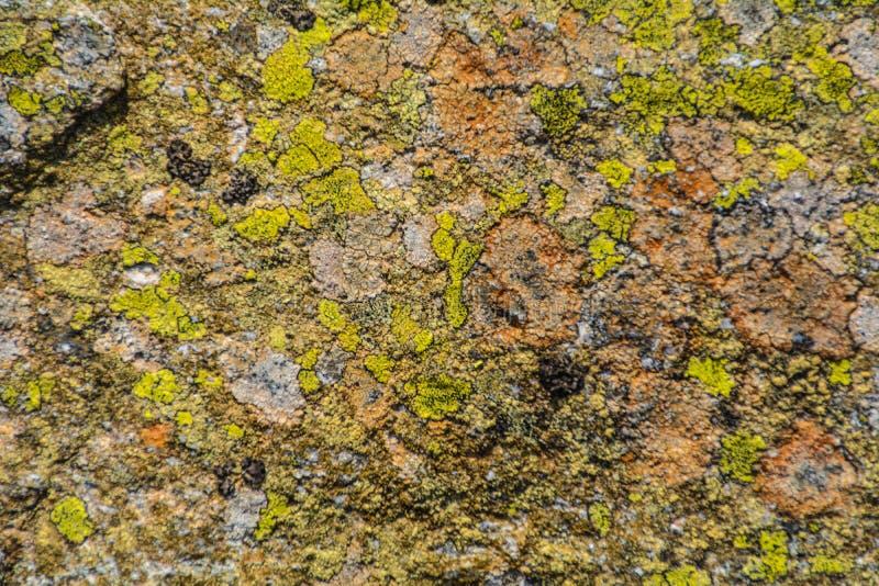 Nice gekleurde steen royalty-vrije stock foto's