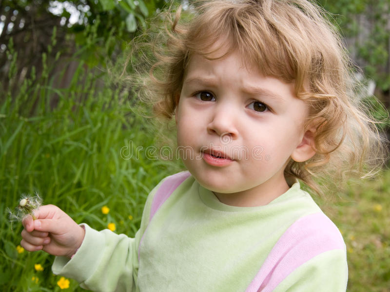 Nice girl with a dandelion stock photos