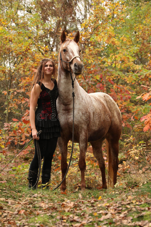 Nice girl with long hair standing next to amazing horse in autumn royalty free stock image