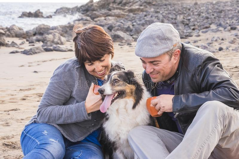 Nice group of dog, man and woman young people having fun together at the beach drinking tea and enjoying the outdoor leisure. Nice group of dog, men and women royalty free stock images