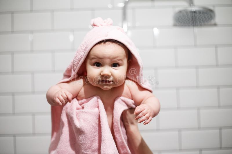 Nice infant is looking on camera. She is serious. It is holded by adult`s hands. Baby is covered with pink blanket. Isolated on. White background stock photos