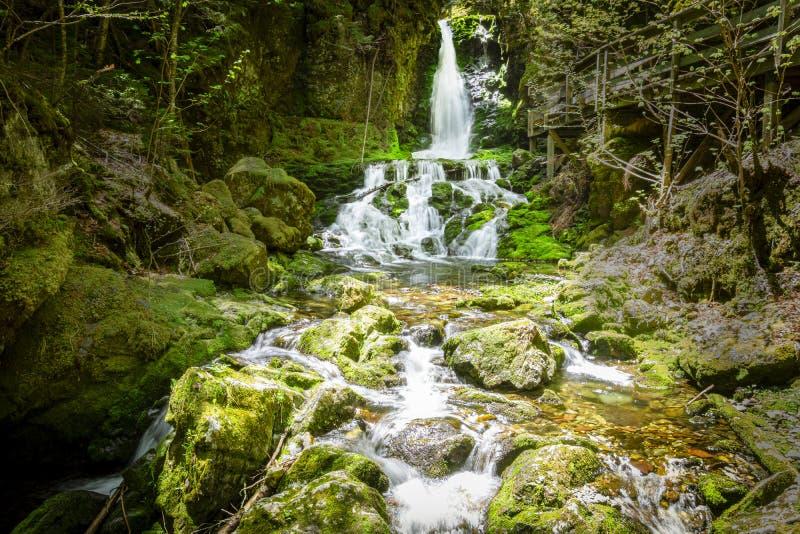 Dickson Falls, Fundy National Park stock photos
