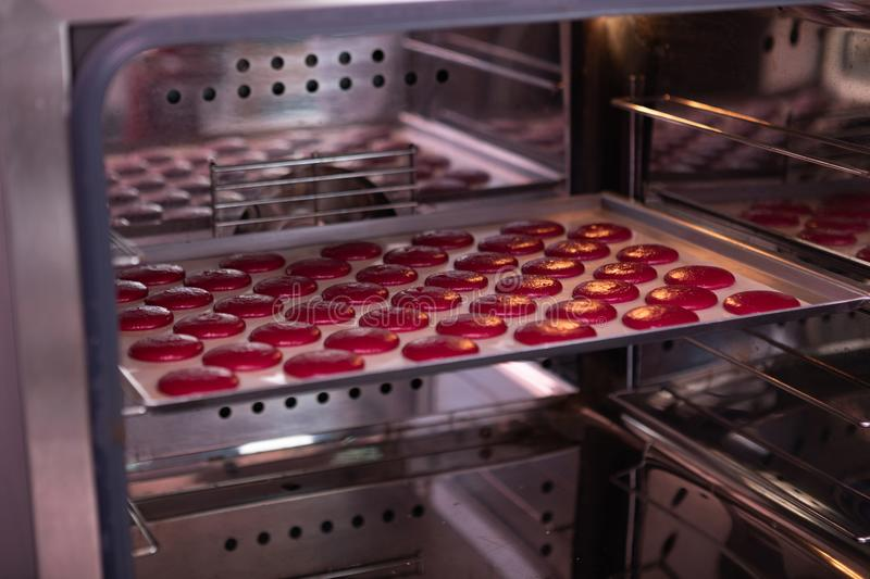 Nice little pink macaroons standing in the oven royalty free stock photo