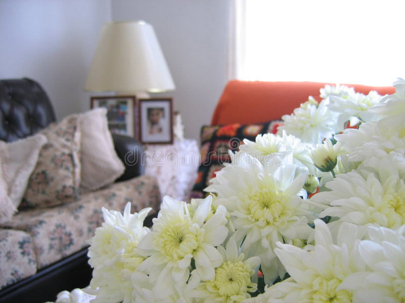 Nice Living Room 1. Flower on a nice living room royalty free stock photos