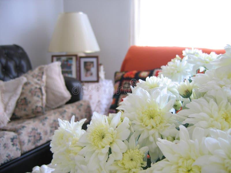 Nice Living Room 1 royalty free stock photos