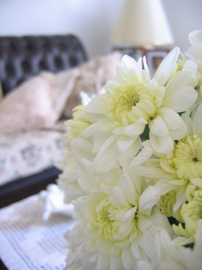 Nice Living Room 2. Flowers on a nice living room royalty free stock photography