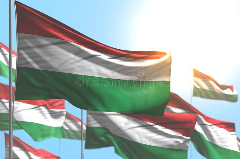 Nice many Hungary flags are waving against blue sky photo with selective focus - any holiday flag 3d illustration. Cute any feast flag 3d illustration stock illustration