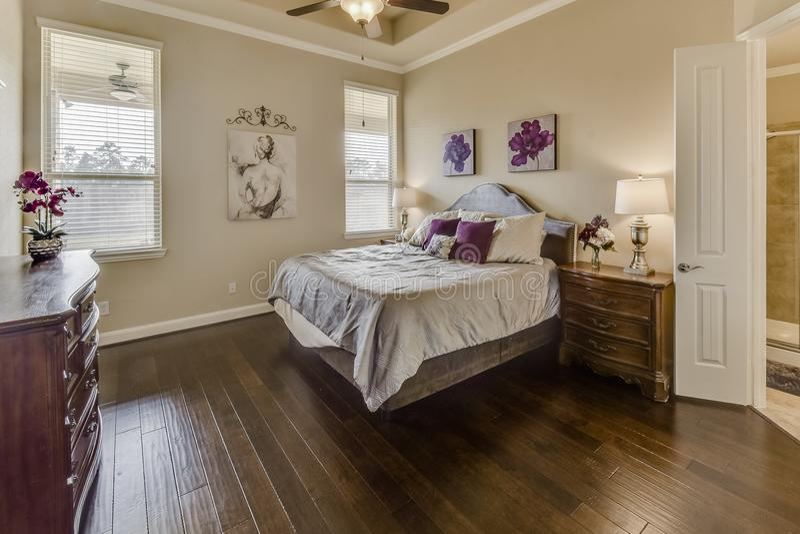 Nice och Sunny Master Bedroom royaltyfria bilder