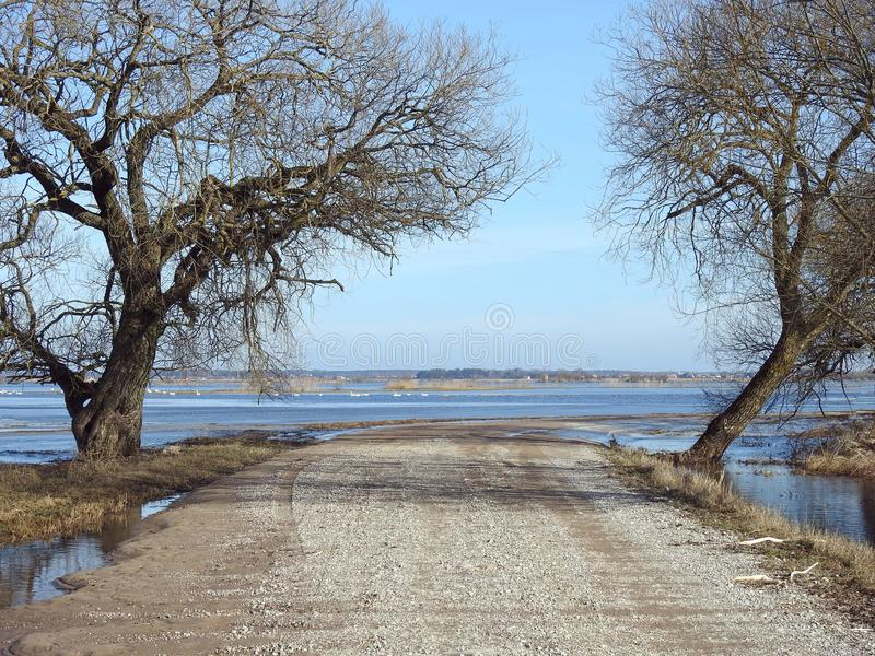 Road and beautiful trees in flood time, Lithuania royalty free stock photos