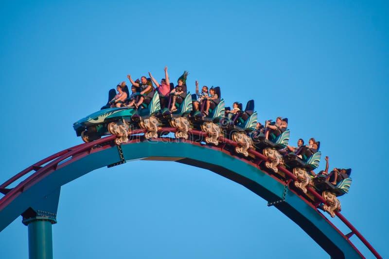 Nice people having fun amazing Mako rollercoaster at Seaworld Theme Park 2 stock photo
