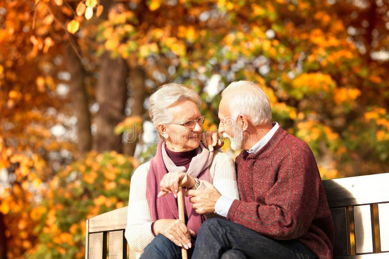 Nice positive elderly couple siting on bench with walking stick stock photography
