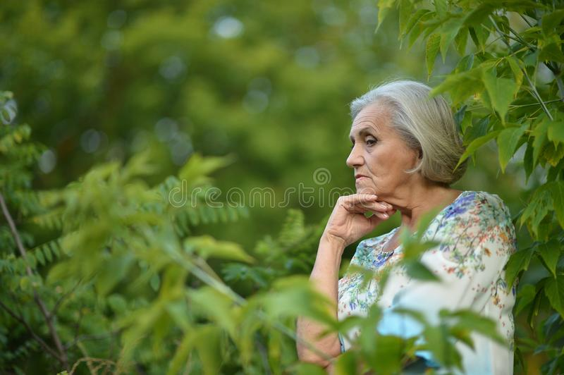 Nice sad old woman. On the spring background royalty free stock photos
