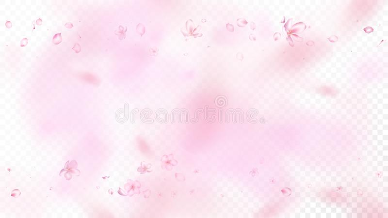 Nice Sakura Blossom Isolated Vector. Magic Falling 3d Petals Wedding Texture. Japanese Blurred Flowers Illustration. Valentine royalty free illustration