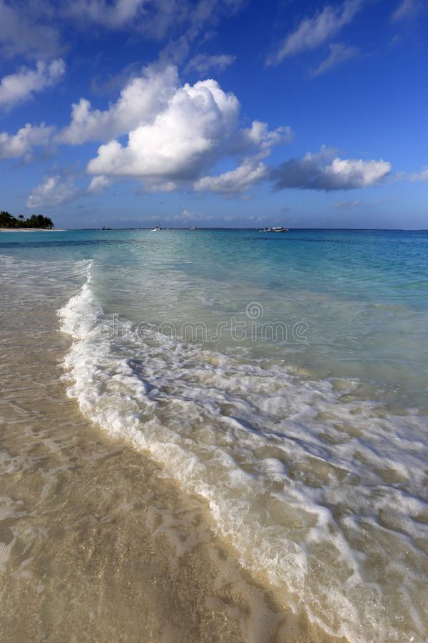 Nice sandy ocean shore. Vertical view on sandy ocean shore in morning royalty free stock photo