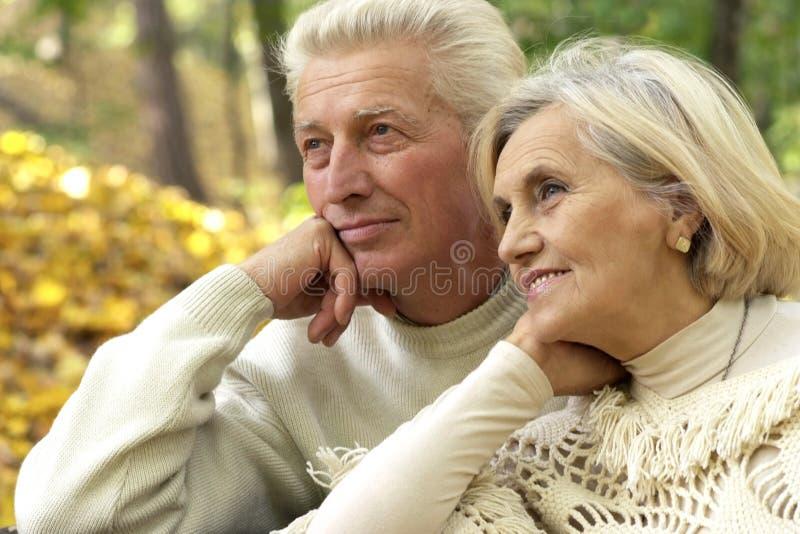 Nice senior couple standing stock image