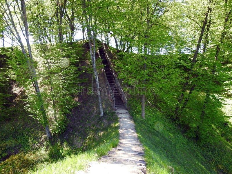 Beautiful Sudargo mound near river Nemunas, Lithuania royalty free stock images