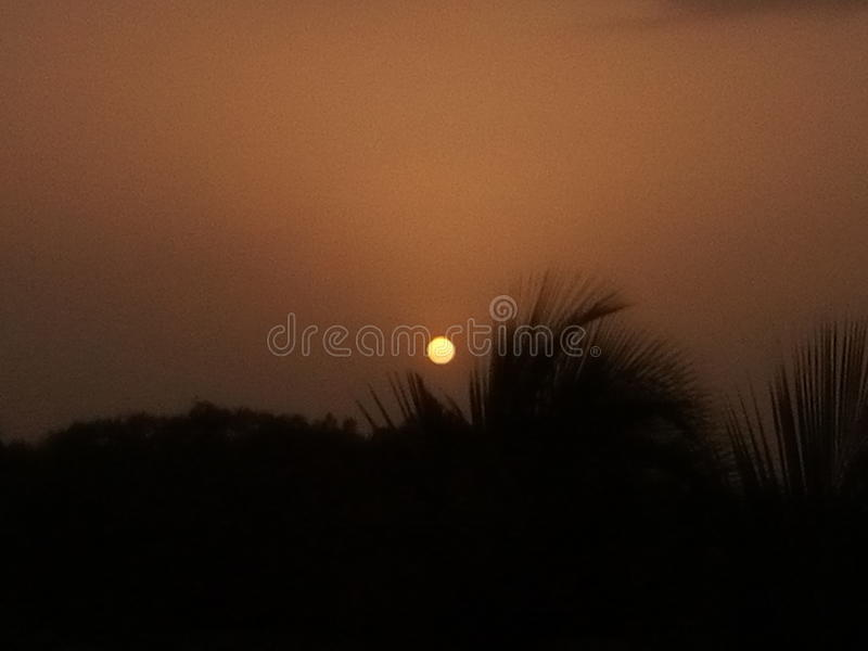 Nice sunset royalty free stock image