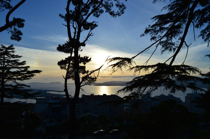 Nice sunset between branches royalty free stock images
