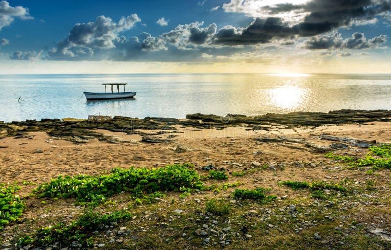 Plaine Corail Seashore - Rodrigues Island - Mauritius stock photography