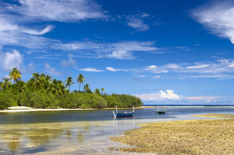 Download Nice tropical lagoon stock image. Image of lonely, blue - 1894299