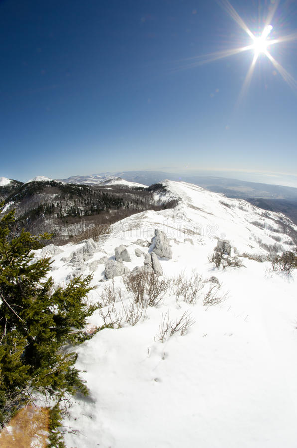 Download Nice view stock photo. Image of winter, snow, very, clear - 29646410