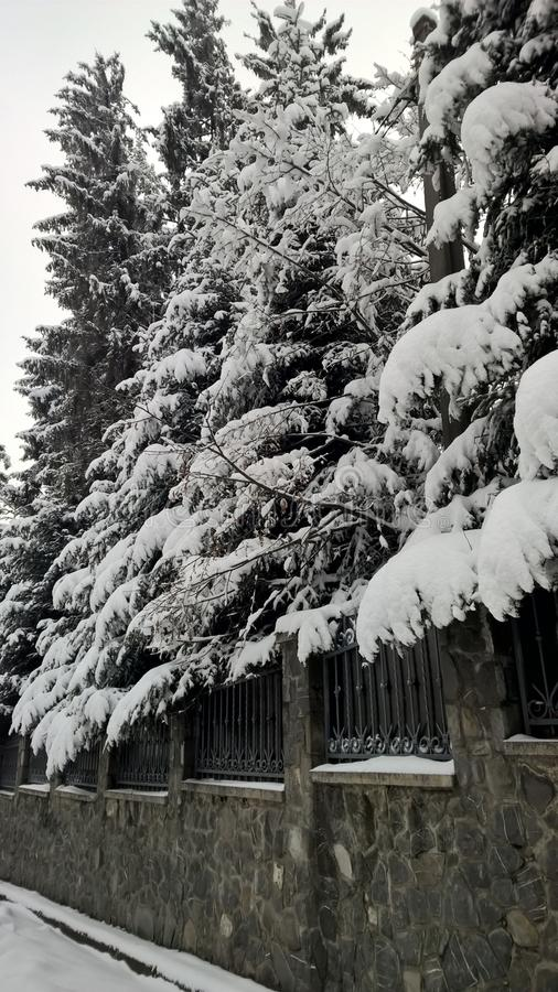 Nice view perspective the snow on trees and stones and steel royalty free stock photos