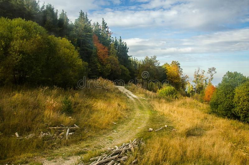 Nice view on road in forest. Autumn landscape stock images
