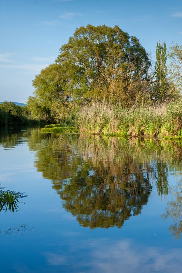 Nice water reflection in Hungary near river Zala stock images