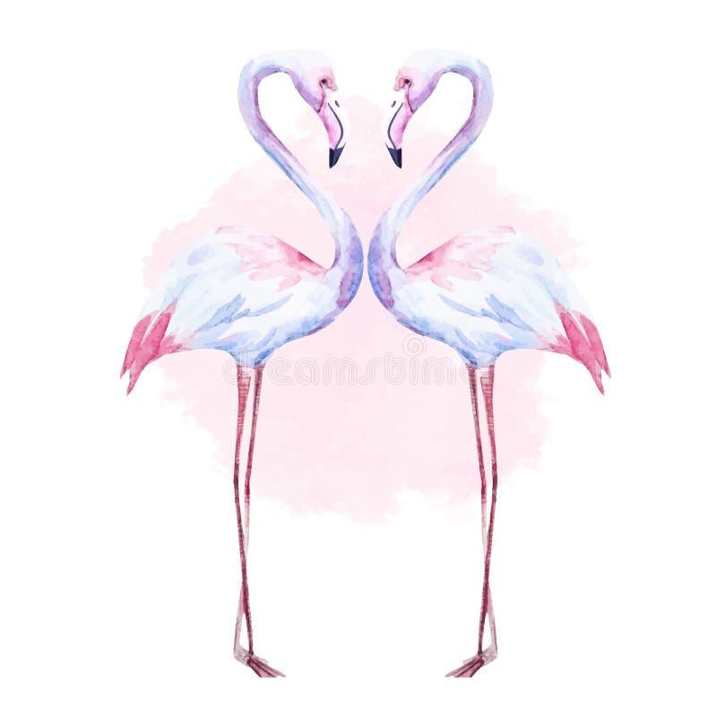 Nice watercolor flamingo vector illustration