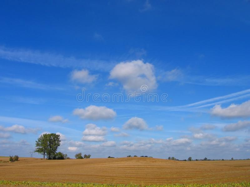 9d1afca2a84 Stock Photo  Nice Wiev Of Field Picture. Image  1348010