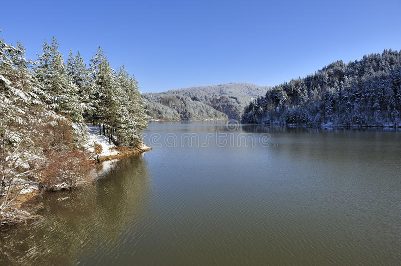 Download Nice Winter Lake Scene With Forest Stock Image - Image: 17753789