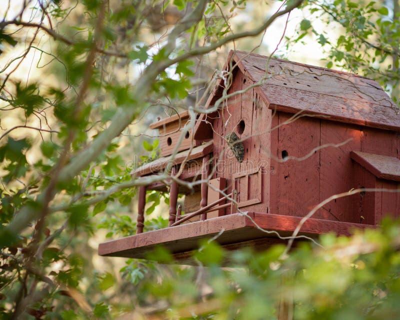 Niché dans les arbres une maison brune d'oiseau de deux histoires fabriquée à partir de le bois image libre de droits