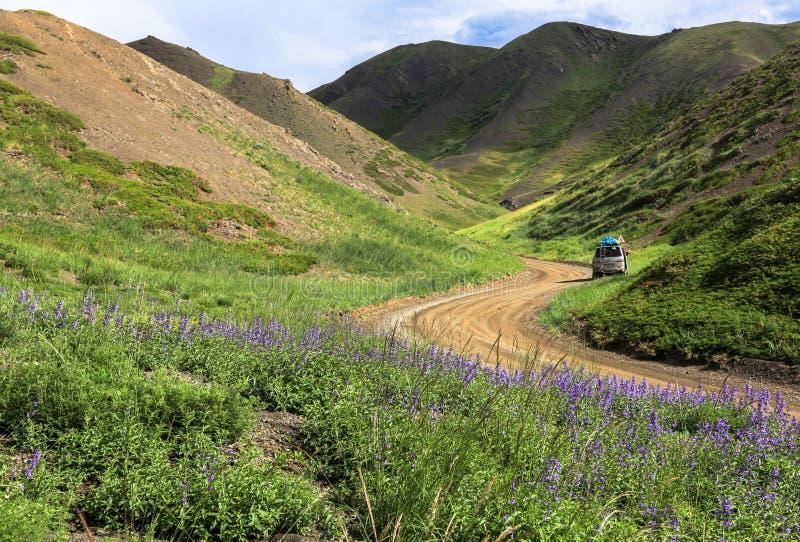 Nicht für den Straßenverkehr in Mongolei lizenzfreies stockfoto